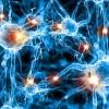 Polacy opracowali nową metodę wykorzystania sieci neuronowych