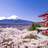 RTB House wchodzi na rynek japoński i otwiera biuro w Tokio